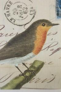 Shabby chic vintage bird picture postcard 00460
