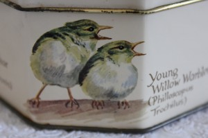 Shabby chic vintage bird tin 00473