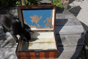 vintage fair finds - old wooden box